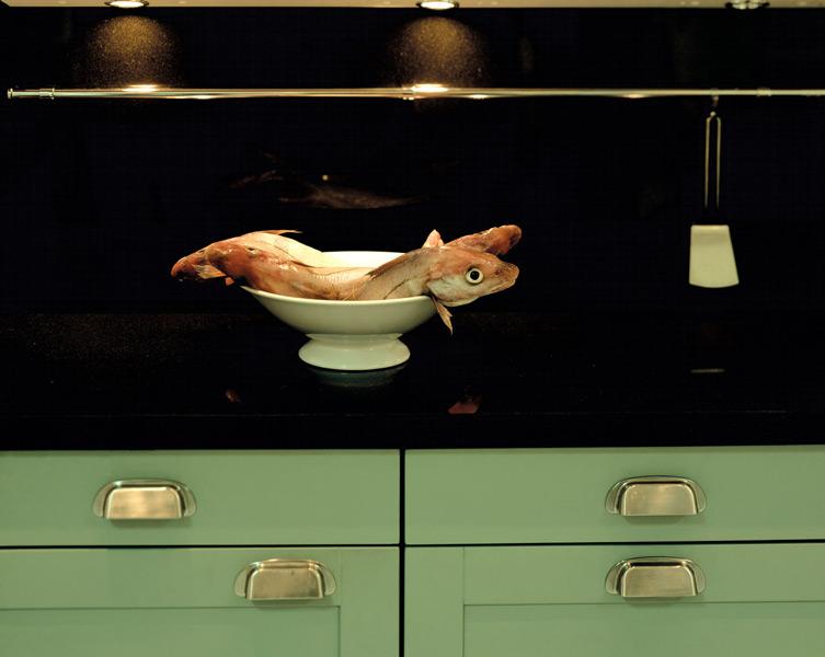 Atelier + Küche = Labore der Sinne | kultur-online