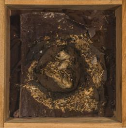 Daniel Spoerri & Robert Filiou, Rat's Nest, 1977, Assemblage, 43 x 42,5 x 12,7 cm, Kunsten Museum of Modern Art Aalborg © Daniel Spoerri und Bildrecht, Wien 2021 Foto: © Niels Fabaek