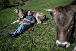 Am 16. Oktober 2018 posiert der Bergbauer Armin Capaul mit seinen Kühen bei Perrefitte. Er lanciert die Hornkuh-Initiative. Das Schweizer Stimmvolk lehnt die Initiative am 25. November 2018 mit 54,7 Prozent der Stimmen ab.  © Swiss Press Photo / Fabrice Coffrini