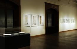 Ausstellungsansicht © NHM Wien, Alice Schumacher