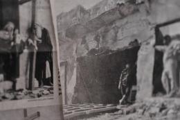 19163-1916302.jpg