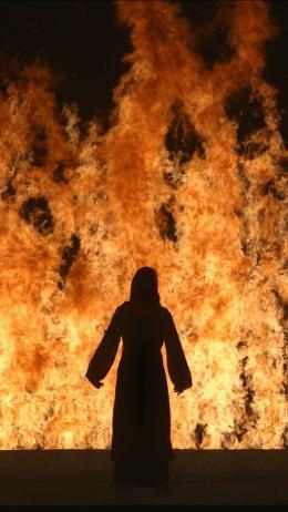 32494-32494billviolafirewoman004kpur.jpg