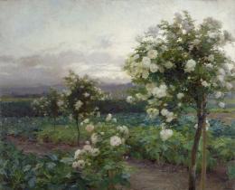 Olga Wisinger-Florian, Sommerabend, 1896 © Leopold Privatsammlung Foto: Leopold Museum, Wien/ Manfred Thumberger