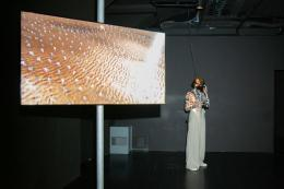 Emergence / Universal Everything (GB). by Ars Electronica (c) Tom Mesic