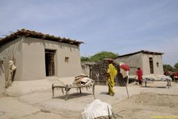 """Yasmeen Lari/Heritage Foundation of Pakistan: Sindh Flood Rehabilitation, Sindh Region, Pakistan, seit 2010 Architektin Yasmeen Lari bildet mit ihrer Heritage Foundation """"Barefoot Entrepreneurs"""" darin aus, in traditioneller Lehm- und Bambusbauweise flutbeständige Häuser und Infrastrukturen zu bauen. Über 40.000 sichere, kostengünstige und äußerst CO2-arme Gebäude wurden seit 2012 realisiert.  © Heritage Foundation of Pakistan"""