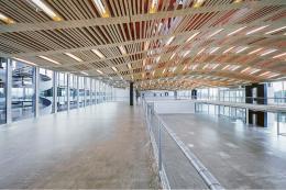 Das Holzdach des Arch-Tec-Lab der ETH wurde programmiert und von Robotern konstruiert. (Bild: Andrea Diglas)