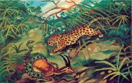 Antonio Ligabue Giaguaro con gazzella e serpente (Jaguar mit Gazelle und Schlange) Undatiert (1948) Öl auf Sperrholz 45 x 71cm Privatsammlung ©