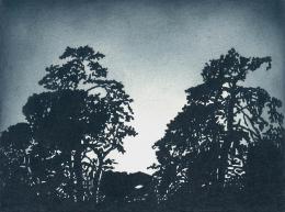 Untitled, 2011; 30 x 40 cm