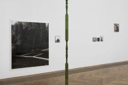 Joanna Piotrowska, Installationsansicht, Stable Vices, Kunsthalle Basel, 2019. Foto: Philipp Hänger / Kunsthalle Basel