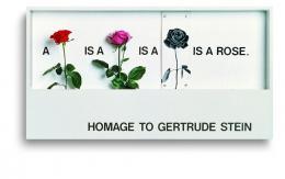 """Timm Ulrich, Homage to Gertrude Stein (""""a rose is a rose is a rose is a rose"""" – in zunehmendem Abstraktionsgrad), 1972/77. Foto: Foto-Hoerner, Hannover; © VG Bildkunst, Bonn 2019"""
