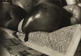 Aenne Biermann: Obstkorb, 1931. Silbergelatine-Abzug, 16,6 x 23,6 cm; Foto: Sibylle Forster. Stiftung Ann und Jürgen Wilde, Pinakothek der Moderne, München