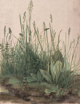 Das große Rasenstück, 1503, Aquarell und Deckfarben, mit Deckweiß gehöht © Albertina, Wien
