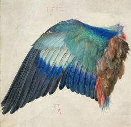 Der Flügel einer Blauracke, um 1500, Aquarell und Deckfarben, mit Deckweiß gehöht © Albertina, Wien