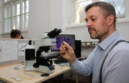 Steinzeitbier: Ohne Mikfroskop sind archäologische Lebensmittelfunde unscheinbar (© Niki Gail/ ÖAW)