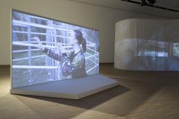 Christina Werner, A Lion Tamer Story, 2021, Installationsansicht © Christina Werner / Bildrecht Wien