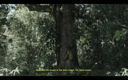 Denise Bertschi, Helvécia, Brazil, 2017 Videostill, 3-screen Videoinstallation, HD, mit Ton, 20 Min. © Denise Bertschi