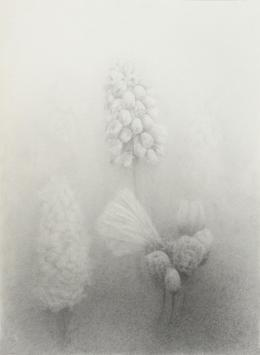 Erich Gruber - Garten - 2019 - Bleistift auf Papier - 52 x 38 cm (c) Galerie Welz