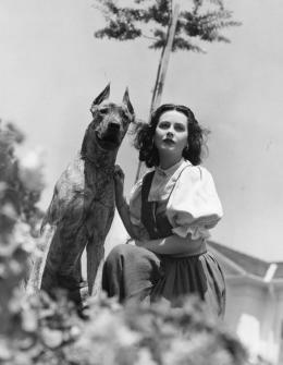 Hedy Lamarr und ihre Dänische Dogge, USA, 1939 © Anthony Loder Archive