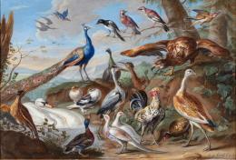 Jan van Kessel: Landschaft mit Vögeln, 1662. Foto: Stefan Rohner