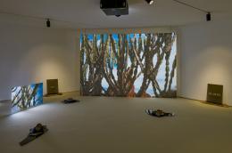 Karimah Ashadu, Plateau, 2021, Ausstellungsansicht Secession 2021, Foto: Iris Ranzinger