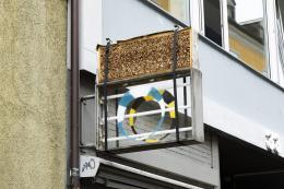 Valentina Minnig,Insect Club, Saint Luke, Zürich, 2019