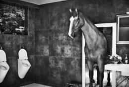 Lenny Kravitz: Seeing a man about a horse  (© Leica Galerie München/ Lenny Kravitz)