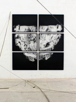 Michael Höpfner, Niederlegen, Aufstehen, Gehen (Schneeleopard), 2015 Sammlung Konstantin Filippou, Wien © Michael Höpfner, courtesy Galleria Michela Rizzo, Venice; Galerie Hubert Winter, Wien, Bildrecht Wien