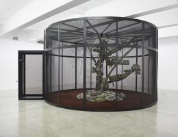 Mark Dion, The Library for the Birds of New York, 2016, Sammlung Migros Museum für Gegenwarts- kunst, Installationsansicht / Installation view Tanya Bonakdar Gallery, 2016