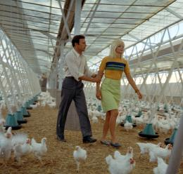 La morte ha fatto l'uovo (Die Falle), 1968, Giulio Questi, Foto: Cineteca Nazionale