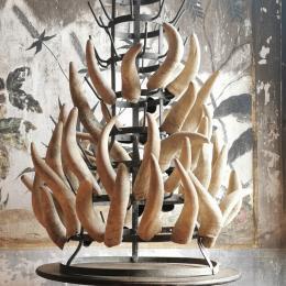 """Irena Rosc, """"Steiner meets Duchamp"""", 2011, Kuhhörner, Flaschentrockner, Masse variabel © Irena Rosc"""