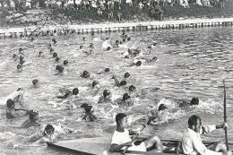 """Schwimmwettbewerb """"Quer durch Wien"""" im Donaukanal zwischen 1912 und 1938"""