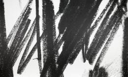 Sonja Gangl, Supra-Linien #05, 2019 Grafitpigment und Acryl auf belgischem Leinen, 143,3 x 237 cm, Courtesy die Künstlerin, Foto: Thomas Gorisek
