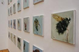 "Ausstellungsansicht ""The Fly"", 2019,  Foto: Universalmuseum Joanneum/J.J. Kucek"