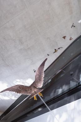 Eine Installation mit verschiedenen Vögeln an der Rolltreppe des Riesenrundgemäldes.  © TLM / Martin Gamper