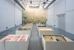 Uriel Orlow-Soil Affinities-installation view Les Laboratoires d'Aubervilliers 2018 (Photo- Oudade Soussi Chiadmi)). (c) VBK Bildkunst 2019