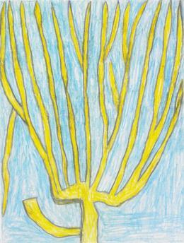 August Walla, BAUM MIT UMGEHACKETEN AST/TREE WITH CHOPPED BRANCH, undatiert/undated, Bleistift, Farbstifte/pencil, coloured pencils, 14,8 x 11,1 cm © Art Brut KG
